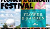Le printemps est arrivé à l'Epcot international fleurs et Festival des jardins