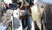 Kim Kardashian enceinte?  Photos Spark rumeurs, QuickTrim régime dit le contraire