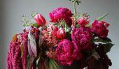Conseils de fleurs pour la Saint Valentin