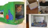Chambres de Cat bricolage d'un moniteur informatique