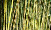 Installez sur le balcon d'un écran de bambou
