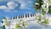 Clavier pour coup propre - un instrument de musique pour les enfants et les adultes