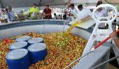 Collège commence la nouvelle année scolaire par Réglage Fruité record du monde