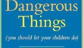Ce livre dit Danger est bon pour votre enfant