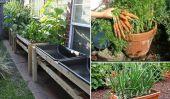 Idées pour cultiver des légumes dans les petits espaces et Yards