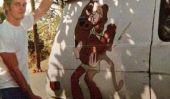 Chris Pratt: Talks Acteur de ses jours sans abri Avant Stardom