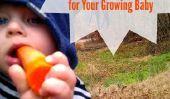 10 éléments nutritifs dont votre bébé a besoin et où les trouver