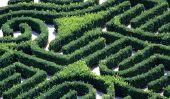 Différence entre labyrinthe et labyrinthe