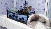 Longcroft Hôtel de luxe ... pour chats