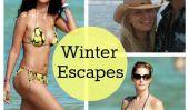 Super Star Snowbirds: Célébrités qui ont échappé au froid pendant une Warmer vacances
