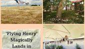 """Flying Henry 'magie des terres dans les librairies (PHOTOS)"