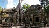 Les arbres géants au temple cambodgien de Ta Prohm
