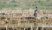 Les mineurs de sel du lac Katwe en Ouganda