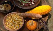 Thanksgiving - la liste des histoires pour la maternelle