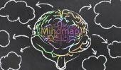 Créez en ligne une carte de l'esprit - comment cela fonctionne: