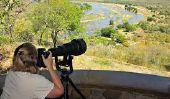 Top 10 des meilleurs et des plus célèbres parcs de safari dans le monde