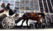 Voitures à cheval NYC: maire de New York Bill de Blasio face à la pression pour garder les chevaux;  Il sera toujours les retirer de Central Park?