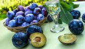 Processus Kriecherl - Recette des fruits