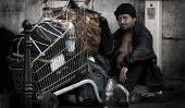 10 villes avec plus haute population sans-abri en 2015