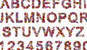 Rub-off lettres - Aperçu