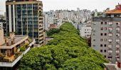 Rua Goncalo de Carvalho: plus belle rue dans le Monde