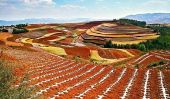 Les Terrasses de Red Earth Dongchuan, Chine