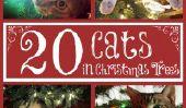 Joyeux CAT: 20 chats qui pense que votre arbre de Noël est leur nouveau jouet