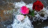 Couronne de bricolage Saint-Valentin