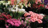 Dimanches acheter des fleurs - si ça va marcher