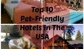 Les meilleurs Pet-Friendly Hotels aux Etats-Unis