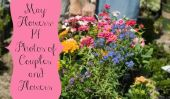 Fleurs mai: 14 photos de couples et Fleurs