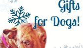 Cadeaux Barktacular pour des chiens!