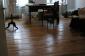 la danse de pratique - répétition de tango réussir systématiquement afin