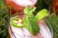 Cocktails d'été: 18 façons de se détendre dans la chaleur