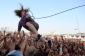 Lollapalooza 2014 rumeurs de Gamme et Prix des billets: Eminem, Skrillex et Arcade Fire confirmés pour le Festival