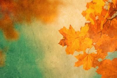 Les arbres et les feuilles - donc vous faire avec les enfants Automne Posters