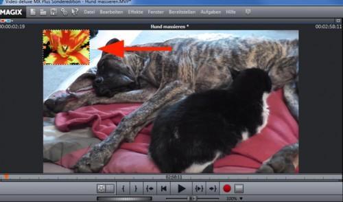Insérer des images dans les vidéos - comment cela fonctionne: