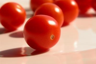Tomate allergie - des informations intéressantes sur les substances contenues