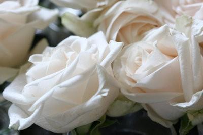 Bricoler des arrangements de fleurs pour le mariage lui-même - comment cela fonctionne créative