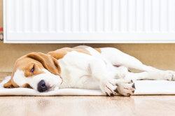 Chaleur exigence calcul radiateur - Instructions