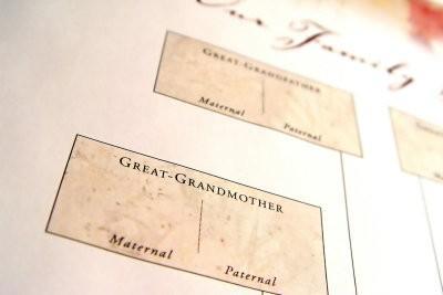 Pour le pedigree de créer une forme - comment cela fonctionne: