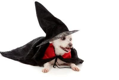 Severus Rogue fabrication de costumes lui-même - comment cela fonctionne: