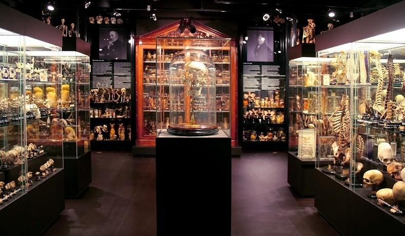 Top 7 Musées étranges à Amsterdam / BeeVar.com CV64