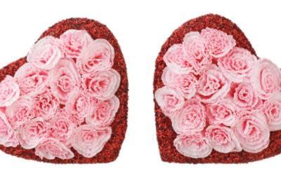 Assurez Maiherz lui-même - comment cela fonctionne avec des roses