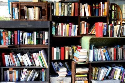 Roman: introduire de nouvelles publications dans les librairies - comment cela fonctionne: