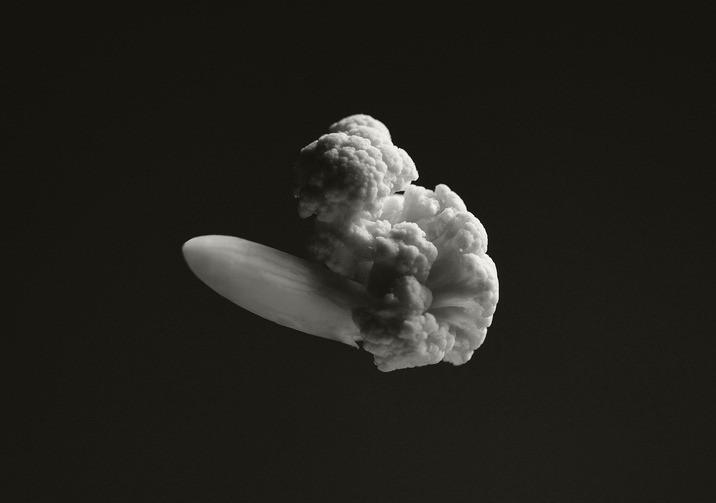 Chou-fleur Explosions par Brock Davis
