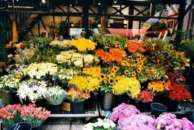 Demande de fleuriste - il vous faut payer