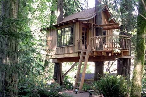 Échapper à TreeHouse point