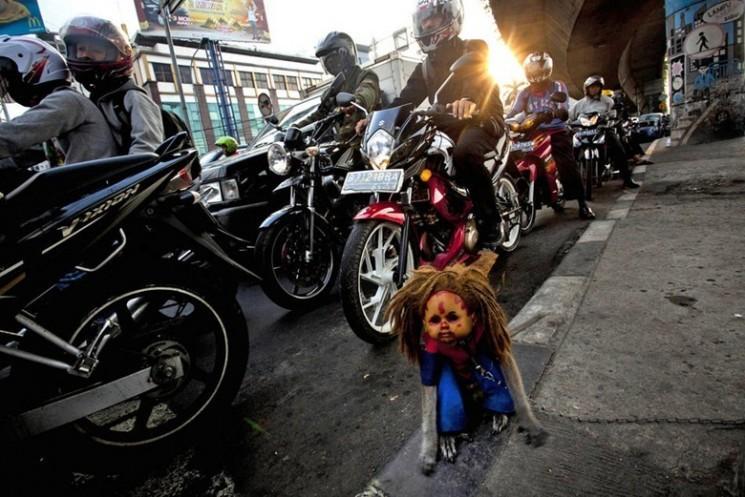 Performing Monkeys rue de l'Indonésie