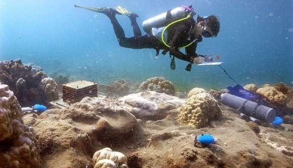 Top 10 des choses les plus troublantes jamais trouvé en mer